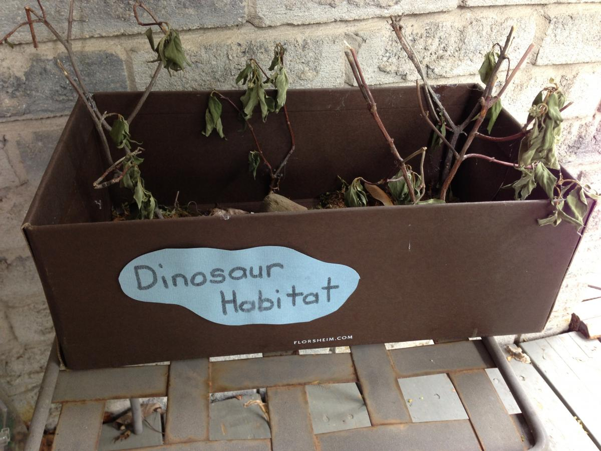 natural dinosaur habitat craft