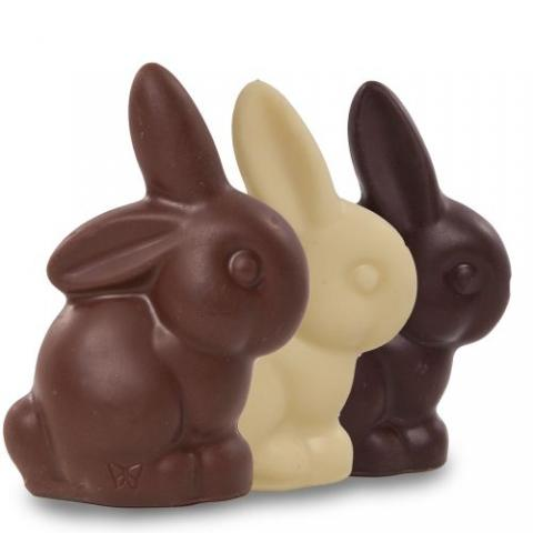 purdys chocolate bunnies