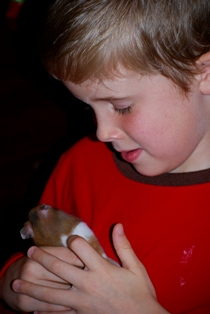 Boy with pet hamster
