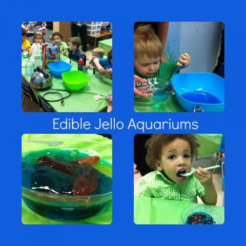 Edible aquariums made with jello for Edible freshwater fish