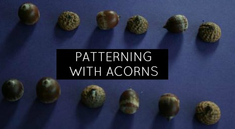 acorn_patterning_feature.jpg